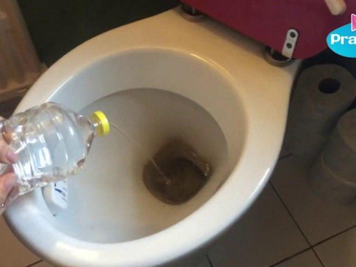 Nettoyer Lunette Toilettes Vinaigre Blanc 7 astuces pour des toilettes propres sans produits chimiques
