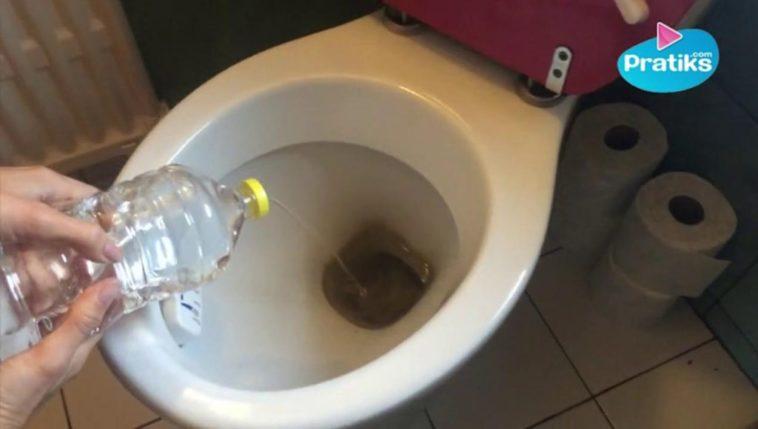 7 astuces pour des toilettes propres sans produits chimiques - Comment desherber avec du vinaigre blanc ...