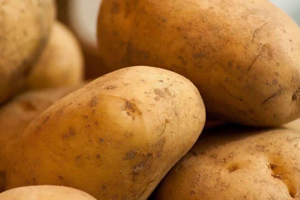 pomme de terre patates