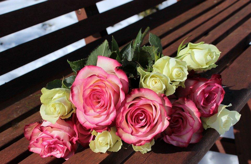 le code couleur conna tre lorsqu 39 on veut offrir des roses. Black Bedroom Furniture Sets. Home Design Ideas
