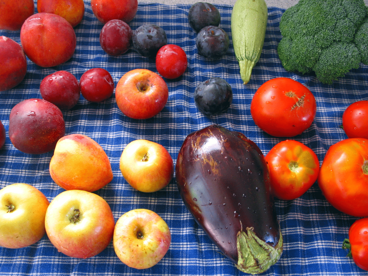 fruits légumes