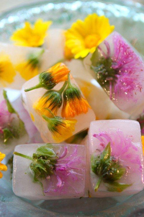 8-herbal-ice-cube-trays