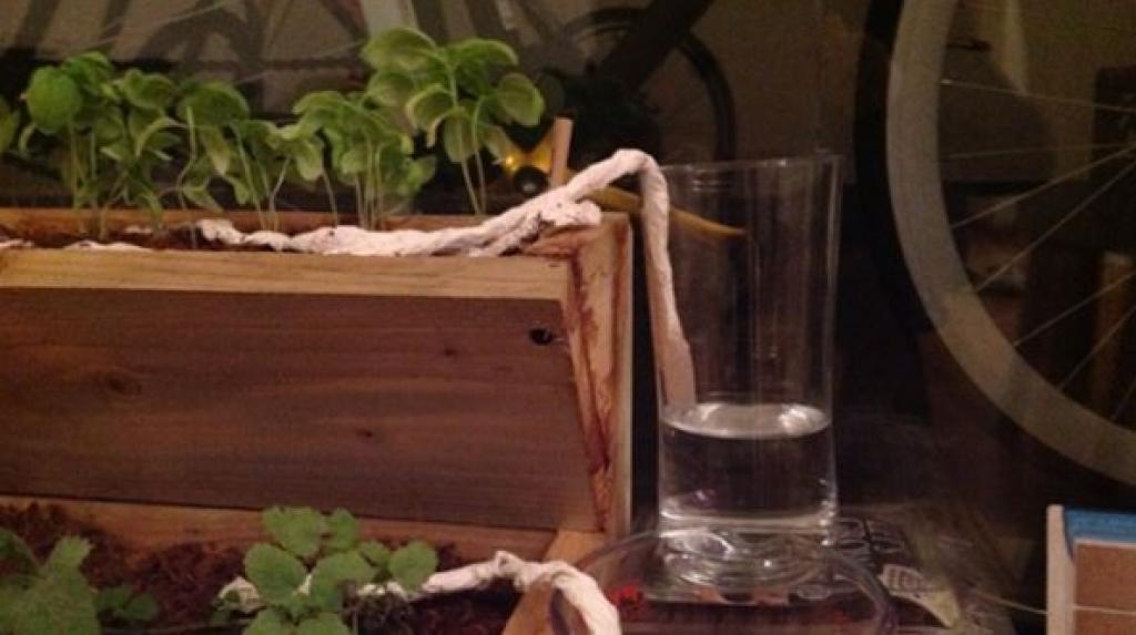 10 astuces simples pour le jardinage qui sont encore trop peu connues. Black Bedroom Furniture Sets. Home Design Ideas