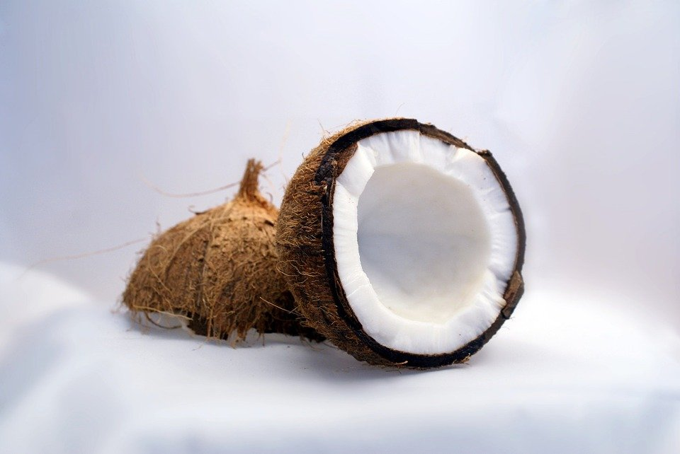 coconut-1125_960_720