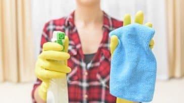 nettoyage ménage nettoyant spray chiffon