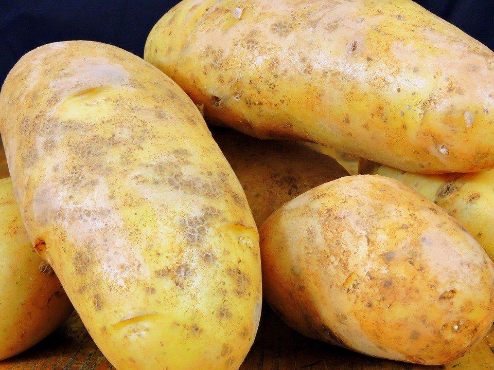 patates pommes de terre
