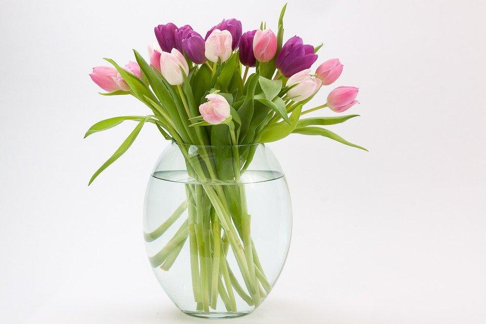 10 astuces pour conserver vos fleurs plus longtemps