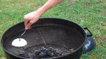 Oignon pour nettoyer grille barbecue