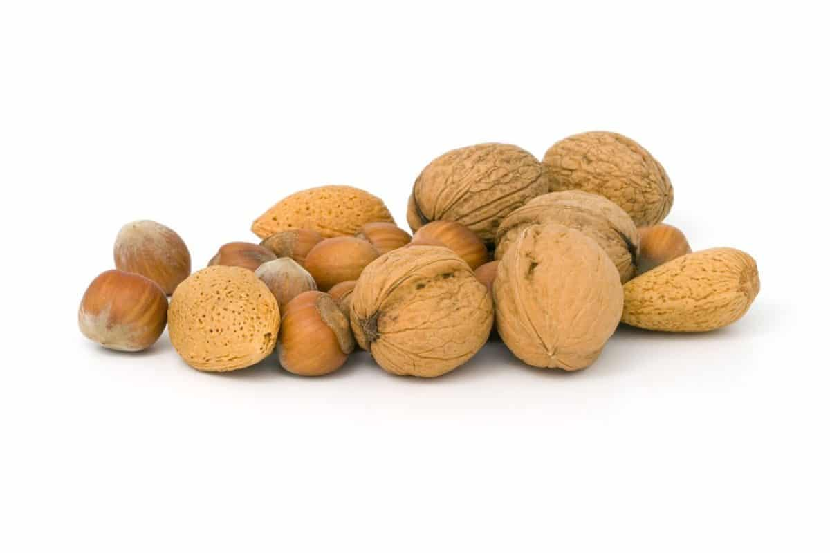 Weight loss foods nuts