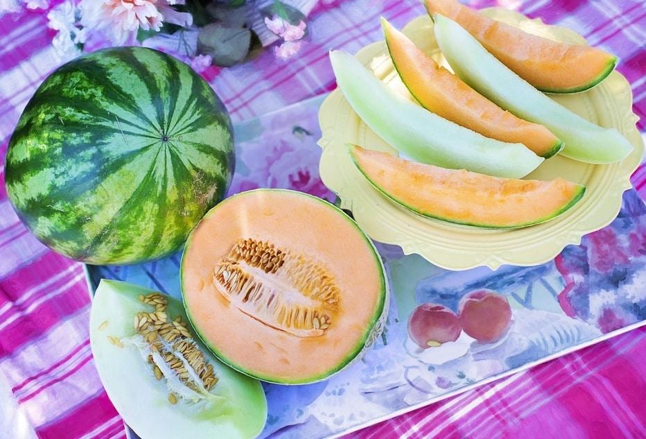 melon pastèque