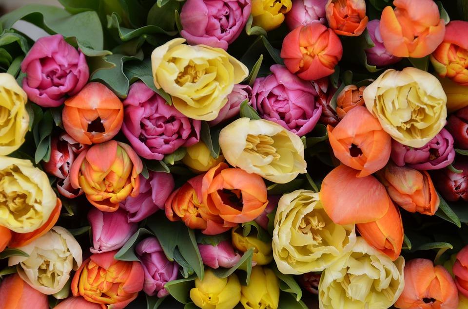 10 choses non alimentaires que vous devriez mettre au for Bouquet de fleurs 10