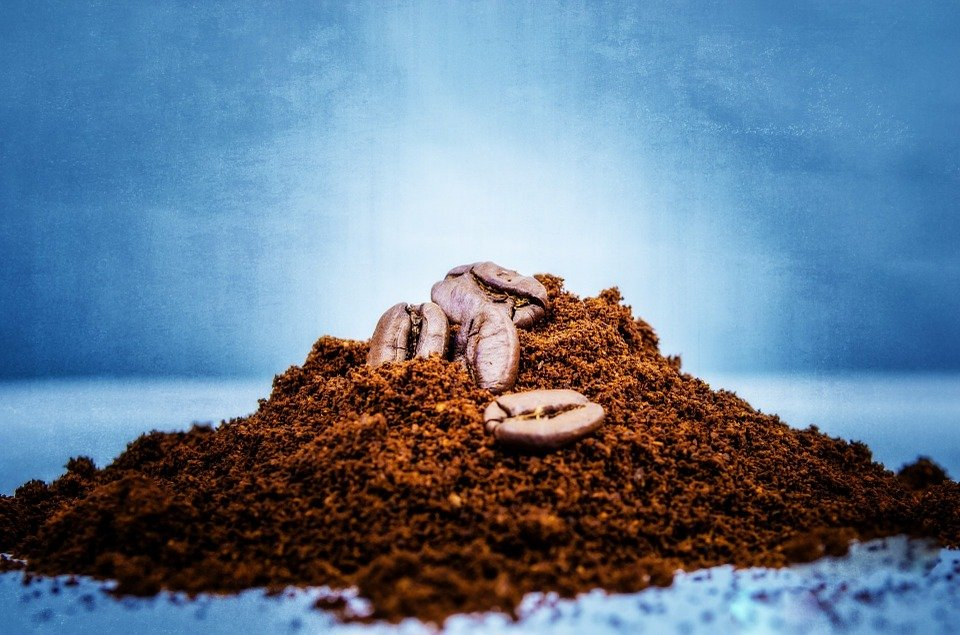 café moulu pour éloigner les guêpes