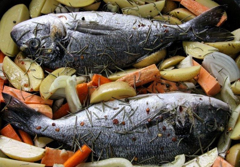 maquereau poisson