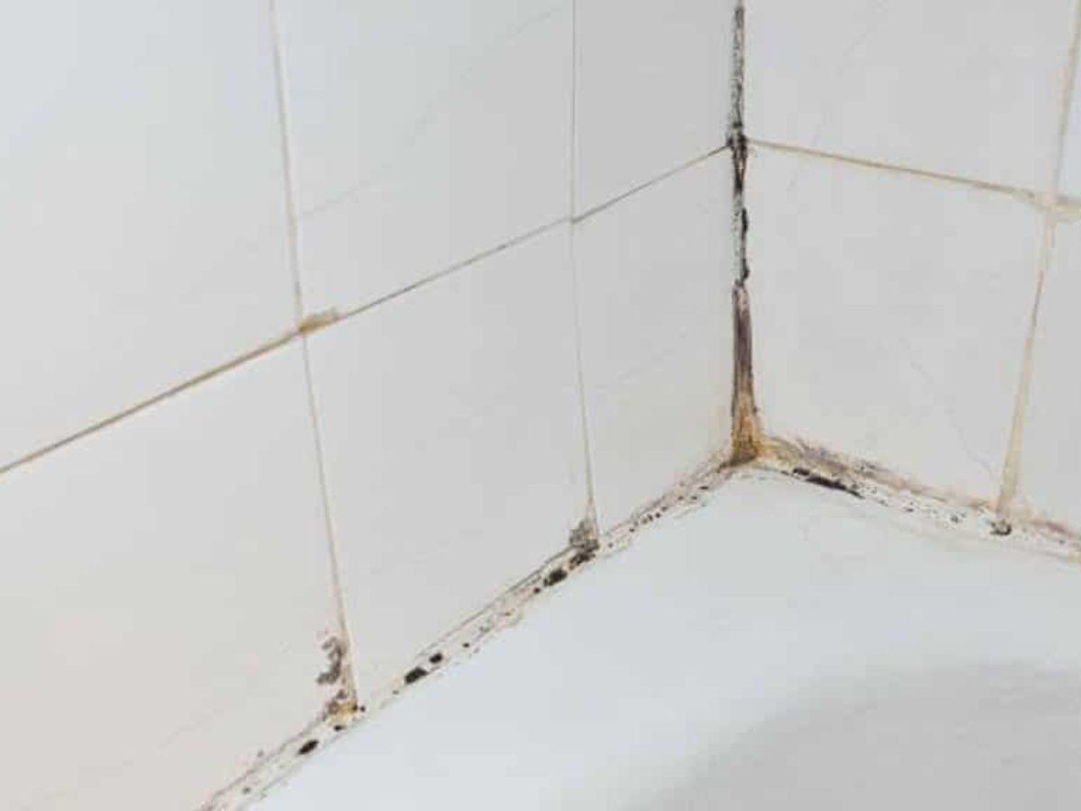 Nettoyer Joint De Carrelage la technique ultime pour nettoyer les joints de carrelage