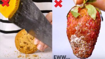 améliorer conservation aliments