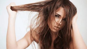 cheveux sales gras