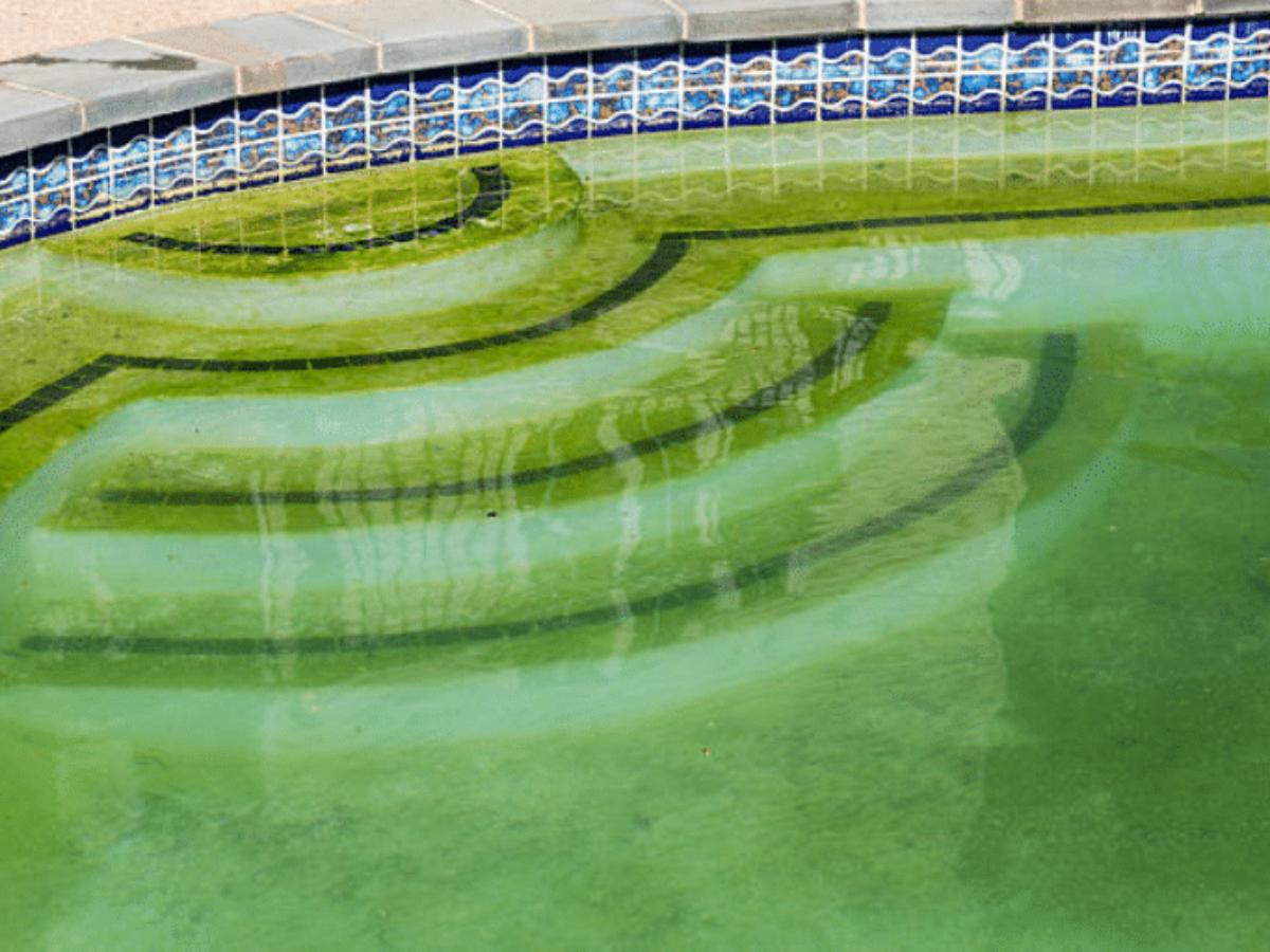 Nettoyage Dalle Piscine Javel une mamie trouve une super astuce pour nettoyer sa piscine verdâtre et  visqueuse