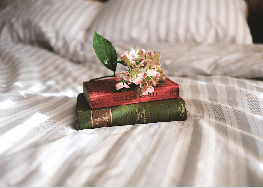 lire livres lecture