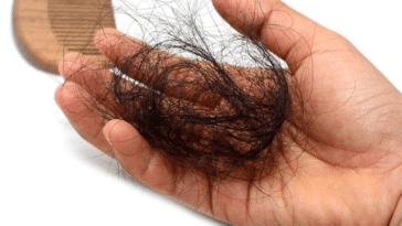 chute de cheveux saisonnière perte de cheveux touffe mèche brossage