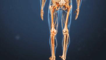 douleur nerf sciatique