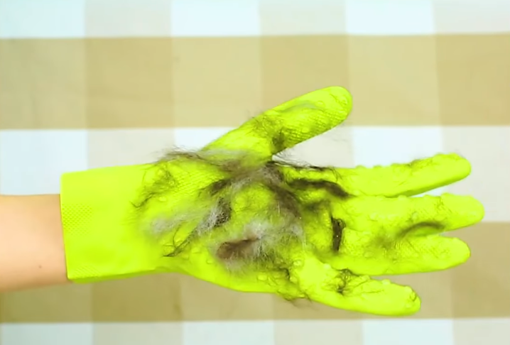 poils de chats gants mappa en caoutchouc