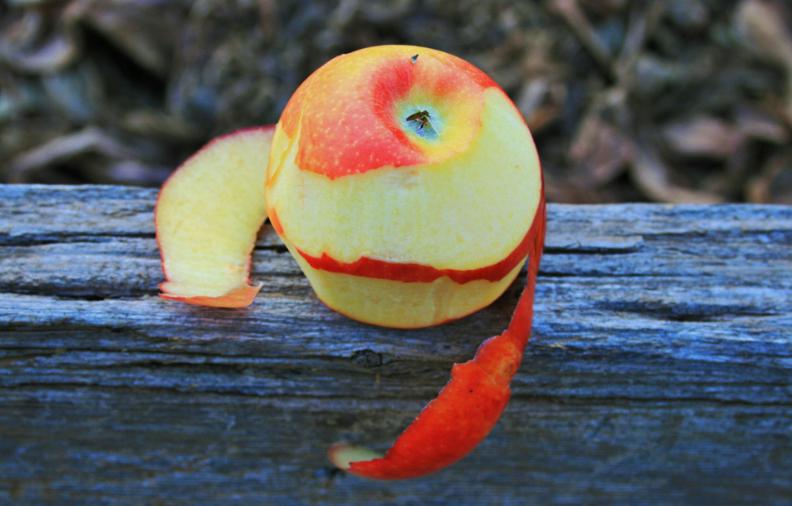 pomme pelures épluchures