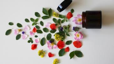 produit cosmétique naturel bio