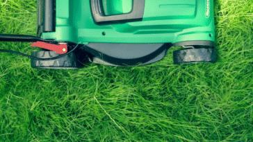 tondre tondeuse pelouse gazon