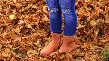 bottes bottines chaussures automne feuilles mortes