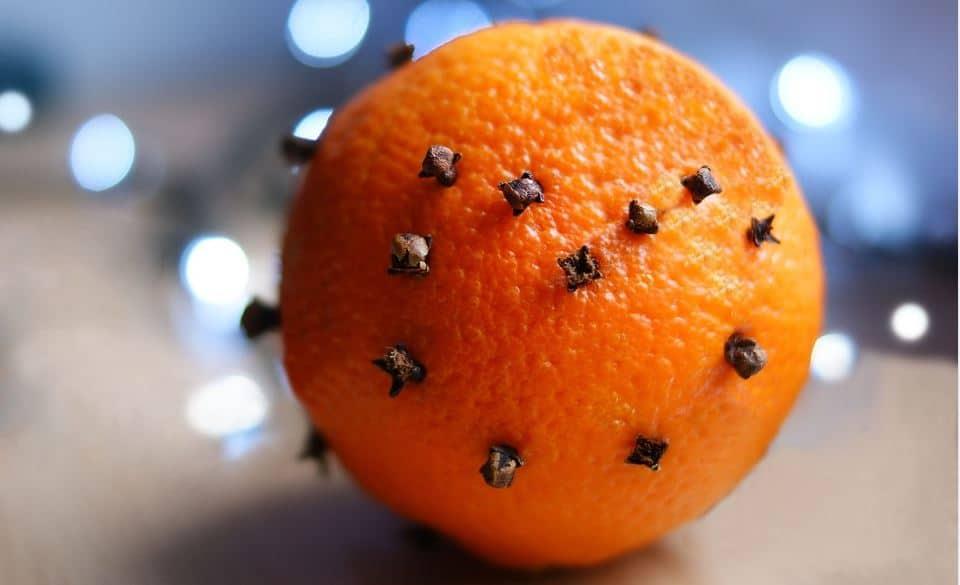 orange et clous de girofle désodorisant naturel toilettes et intérieur + anti mouche