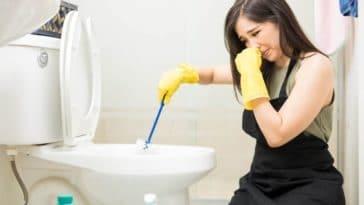 wc toilettes odeurs