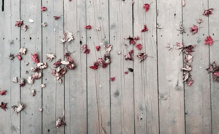 terrasse en bois sale à nettoyer