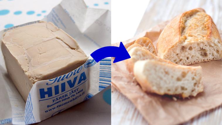 levure de boulanger boulangère pain
