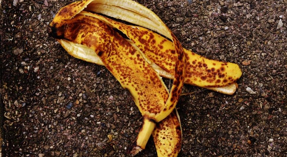 peau de banane utilisations jardin