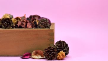 Pot Pourri couverture