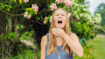 allergie au pollen rhinite allergique rhume des foins