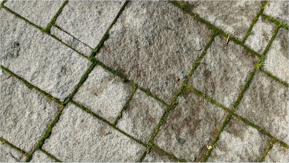 mousse terrasse dalles