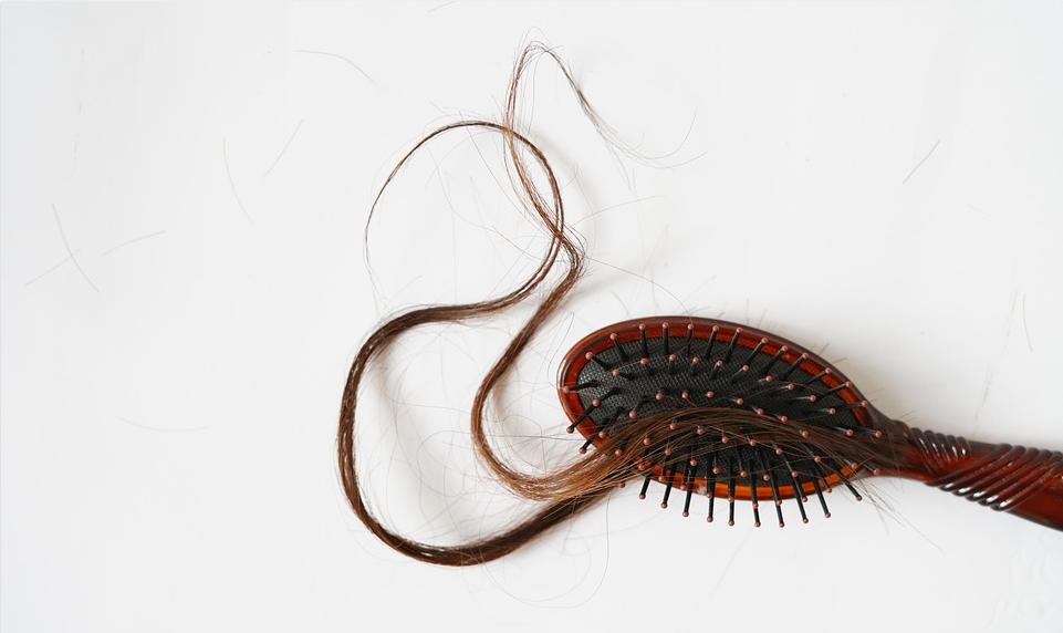 perte de cheveux chute de cheveux