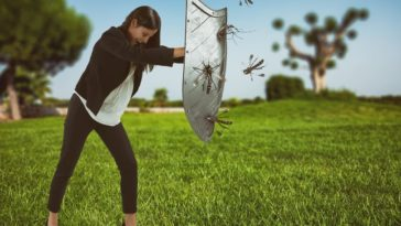 insectes moustiques répulsif protection