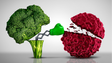 brocoli cancer nourriture alimentation anti cancéreuse