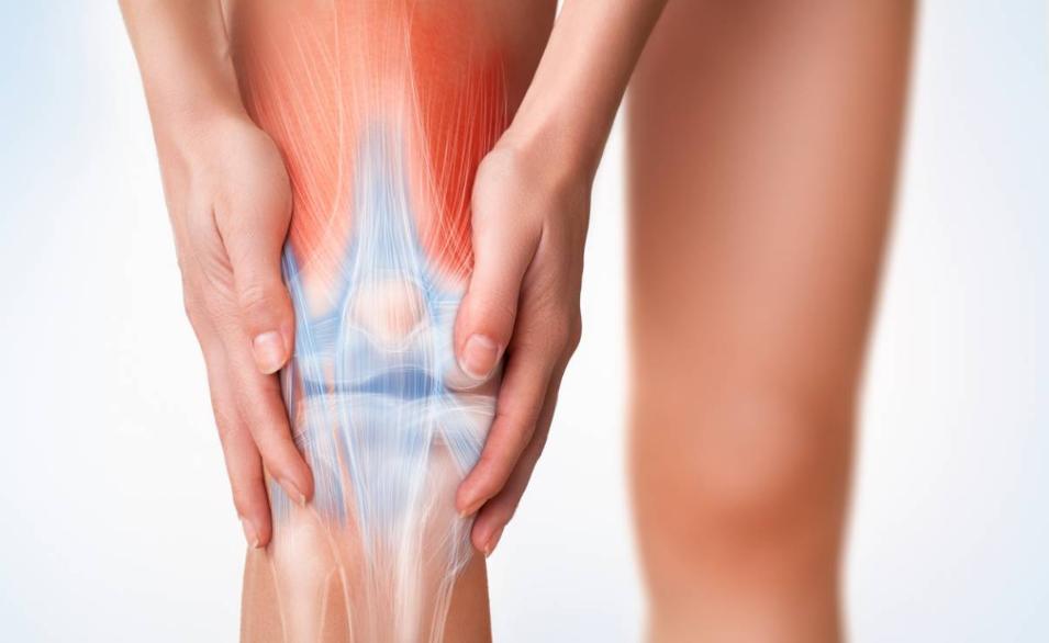 arthrose douleurs articulation genou