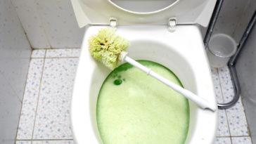 déboucher toilettes bouchées nettoyer