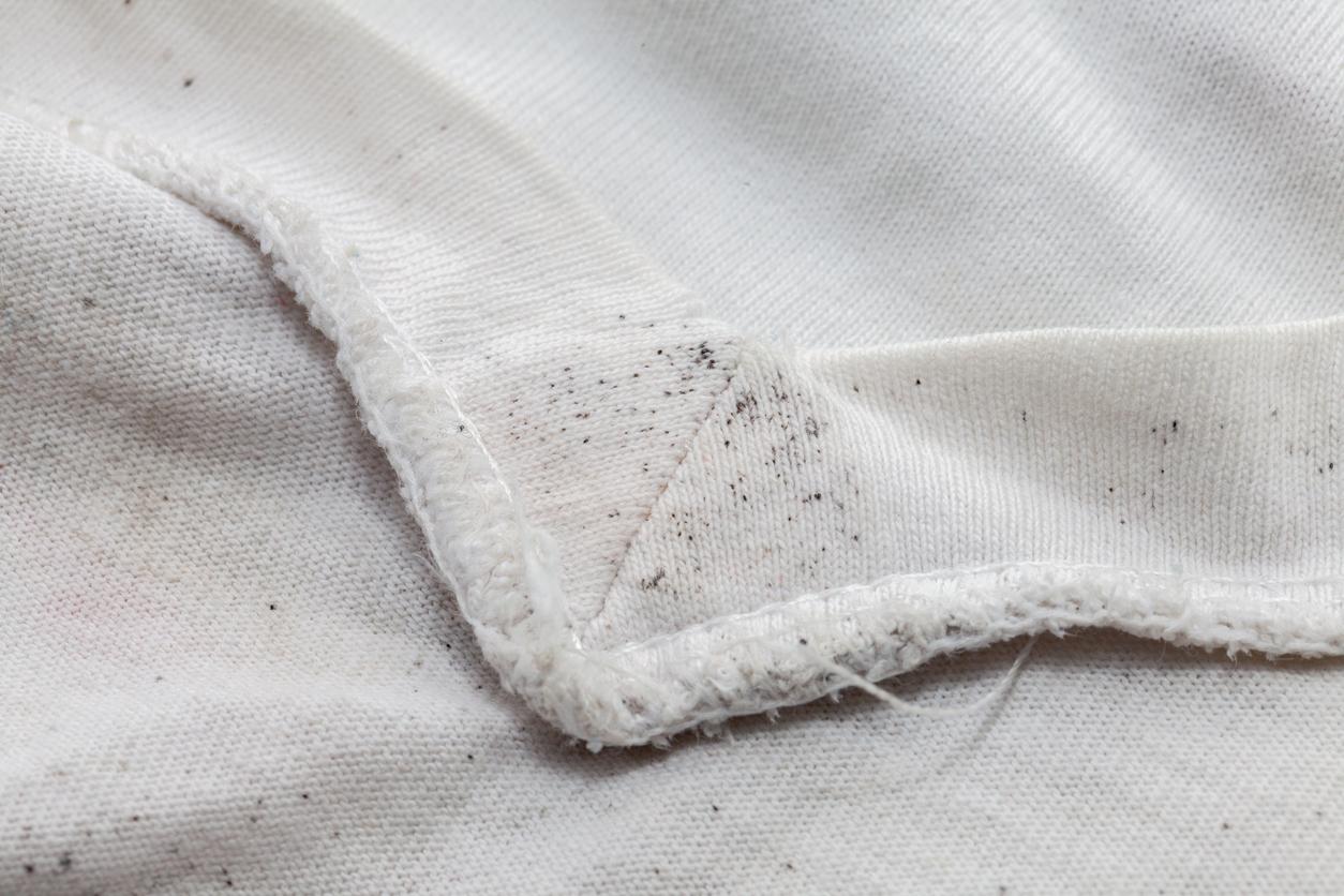 taches de moisi moisissures sur les vêtements