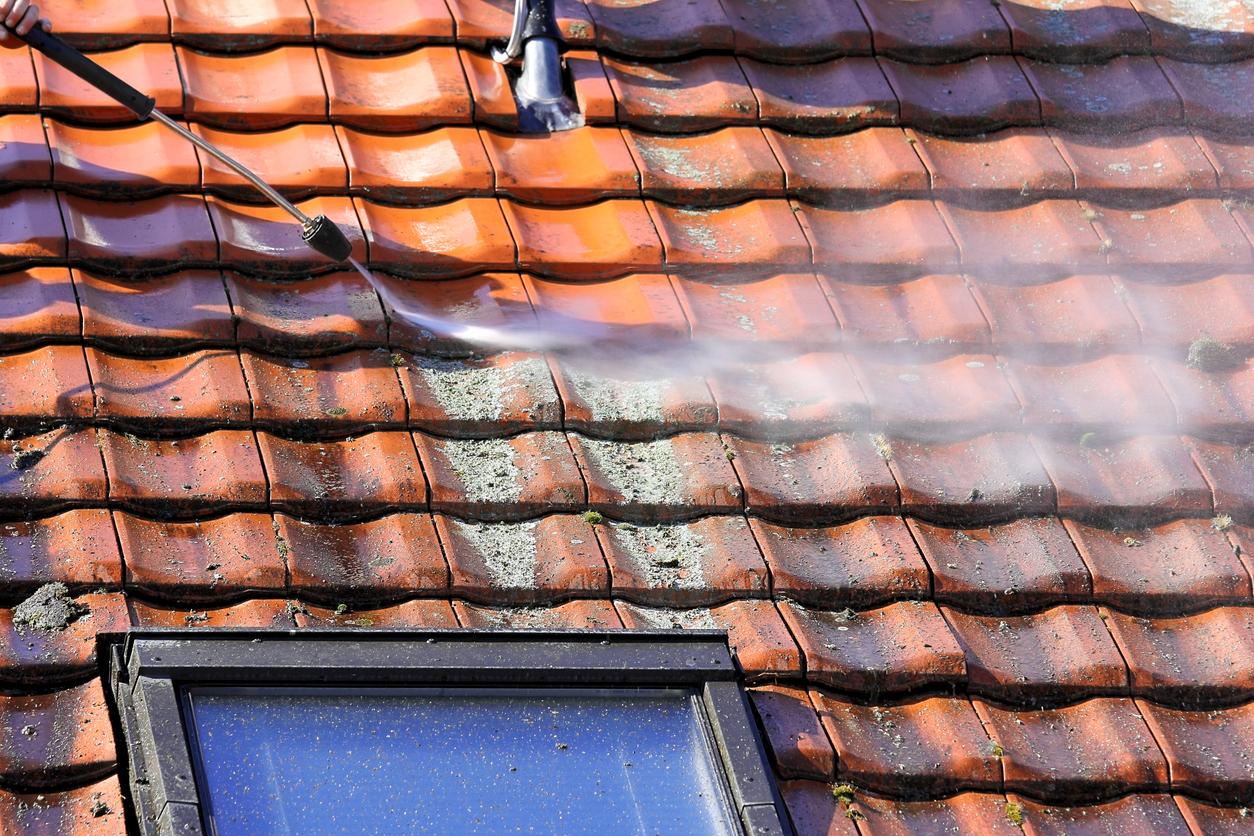 démoussage toiture toit mousse lichens