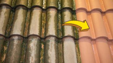 une démoussage toit toiture mousses lichens