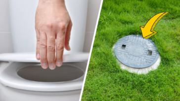 nettoyer toilettes avec fosse septique