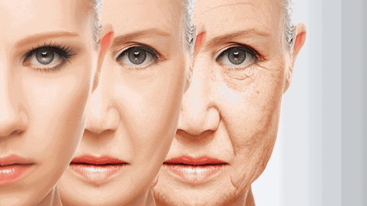 vieillissement cutané vieillir rides