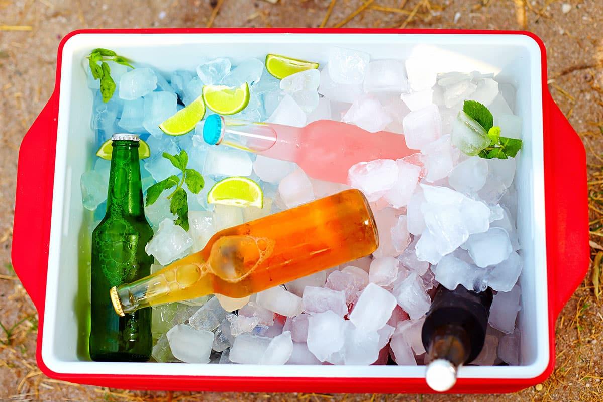 glacière boissons fraîches