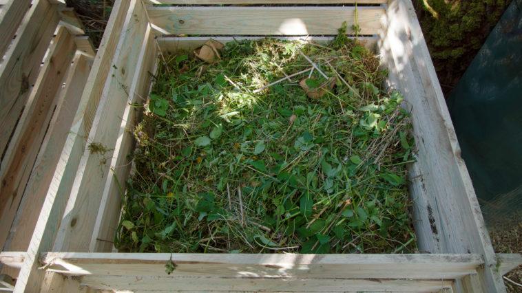 bac de compostage composteur compost mauvaises herbes déchets verts